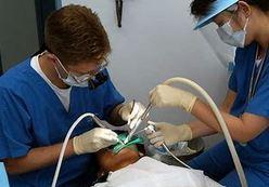 dentist Woodville Adelaide